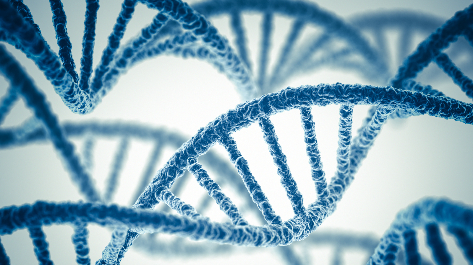 the ethics of genetic engineering and genetic manipulation Genetic engineering concept genetic engineering is the alteration of genetic material by direct intervention in genetic processes with the purpose of new brunswick, nj: transaction publishers, 2001 chadwick, ruth f the concise encyclopedia of the ethics of new technologies.